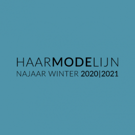 Logo HML .png